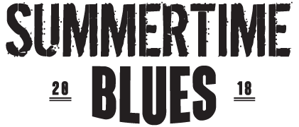Image result for summertime blues festival owen sound
